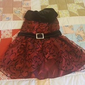 Dresses & Skirts - Burgandy and black velvet dog dress m/s